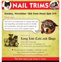 NAIL TRIMS on Sunday November 16th