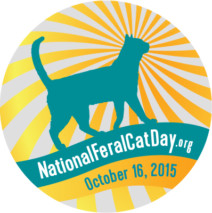 National Feral Cat Day – October 16